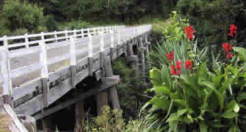Timber bridge in ecologically sensitive area.