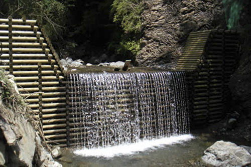 Stream flood control with treated dam.